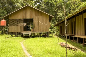 Base camp at the Orangutan Kutai Project