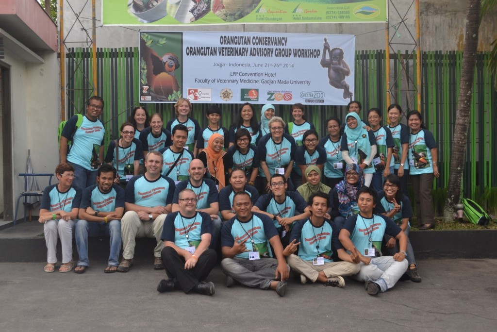 Veterinarians at the 2014 OC/OVAG Veterinary Workshop in Indonesia