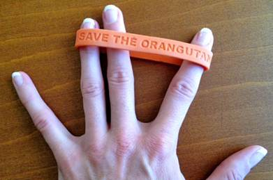 """Save the Orangutan"" Wristband"