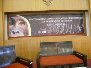 The banner for the symposium.  Translation:  The Role of Veterinarians in Orangutan Conservation