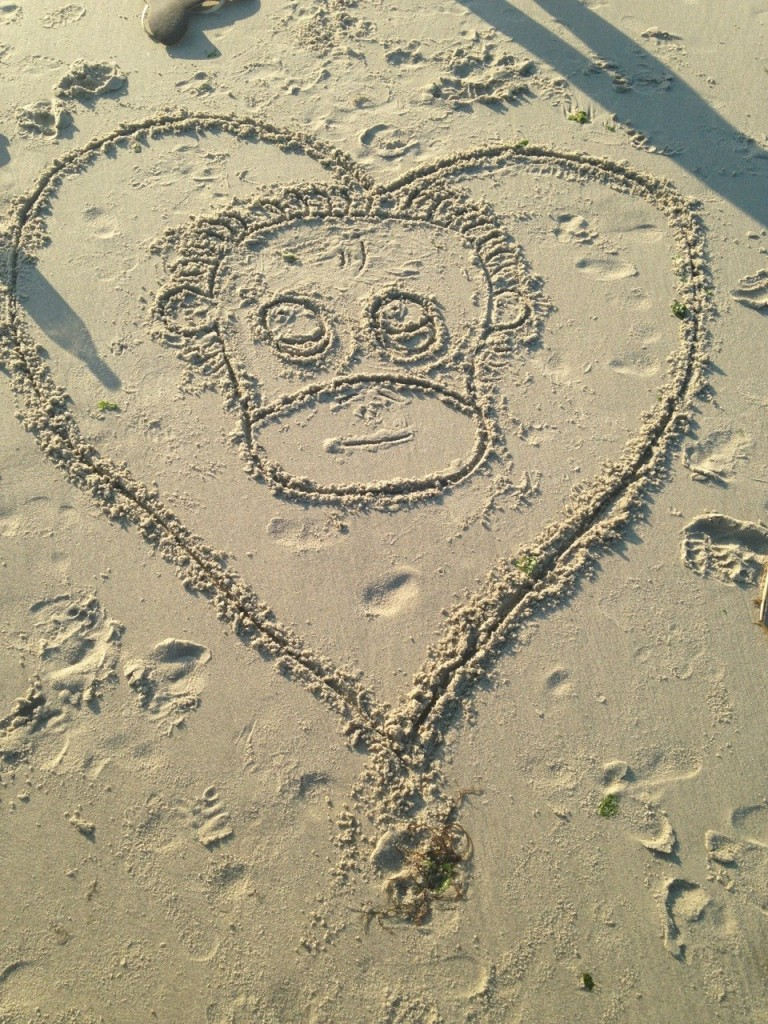This sand creation was made by Courtney on International Orangutan Day 2014