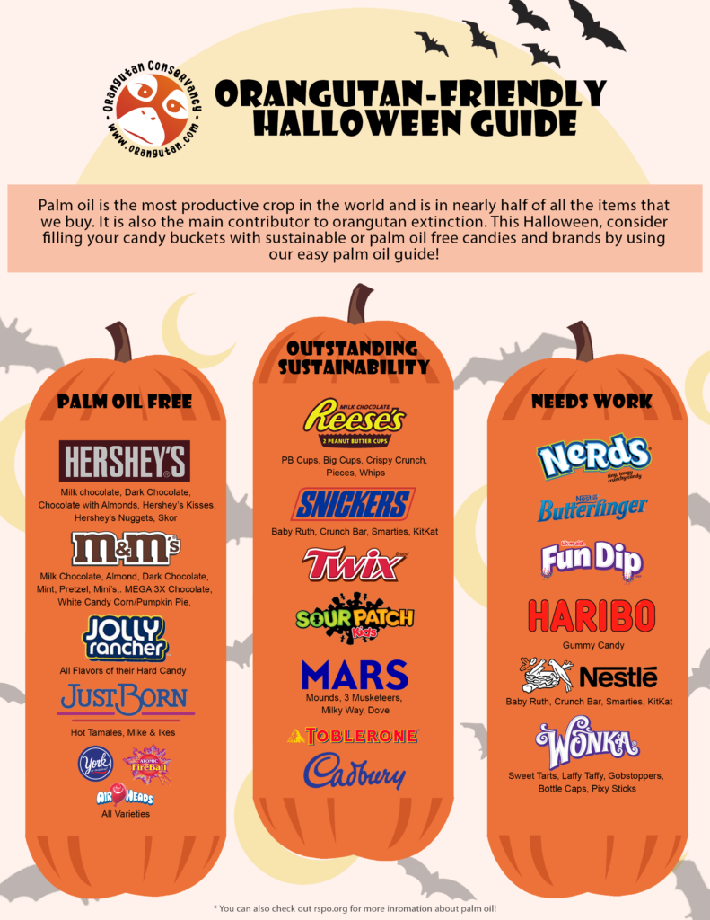 A guide to sustainably sourced Halloween candy!